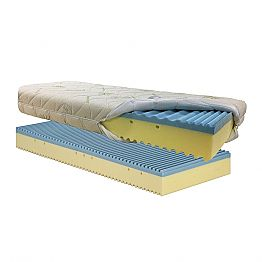 Mattress Bio Shape Single